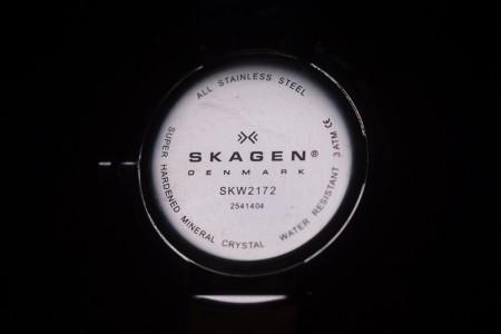SKAGEN SKW2172